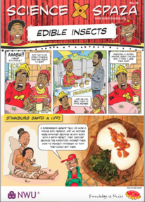 Edible Insects Worksheet thumbnail 2019.png